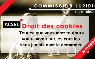 """""""Cookiesification"""": CNIL, RGDP, CEPD, droit et obligations ; la recette pour de bons cookies"""